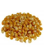 Ziarno kukurydzy (popcorn)