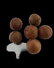 Orzechy macadamia w łupinie, prażone z kluczem do otwierania
