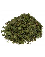 Lubczyk ziele (nać)