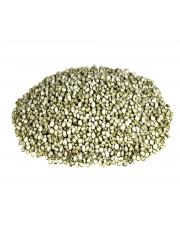 Quinoa biała - Komosa Ryżowa biała (Ameryka Płd)