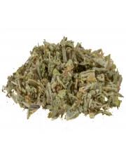 Gojnik suszony (herbata górska)